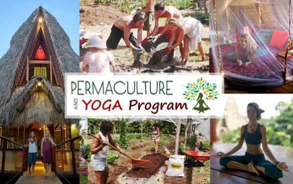 Permaculture course and yoga in Costa Rica