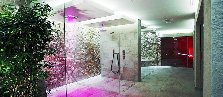 Turkish Bath  /  Sauna and Bio-Sauna   / Emotional showers