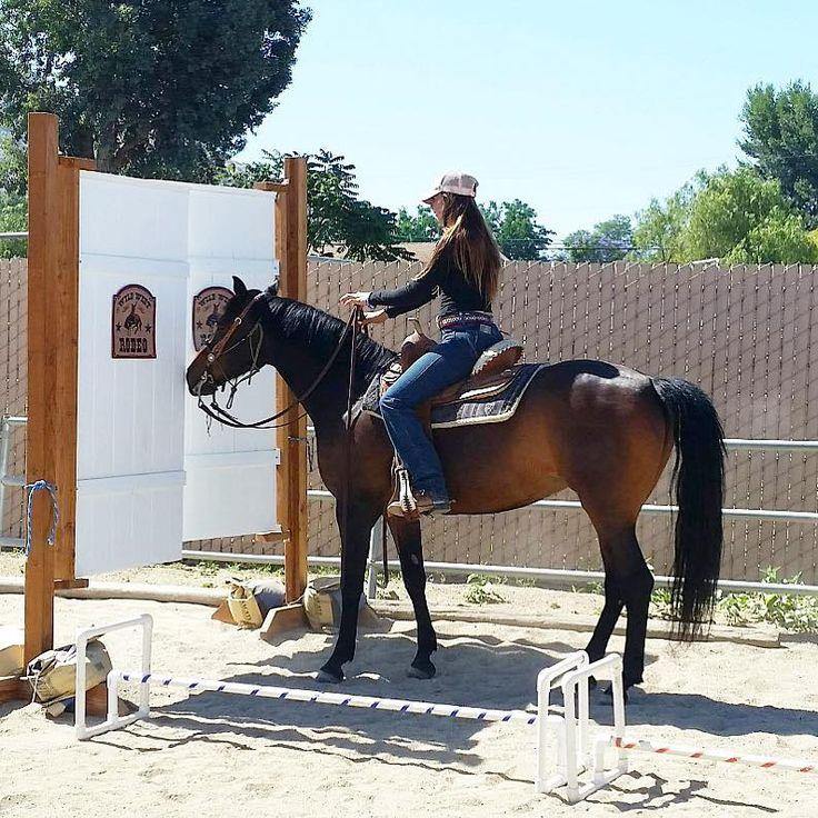 Horse obstacle push through doors. Interesting idea