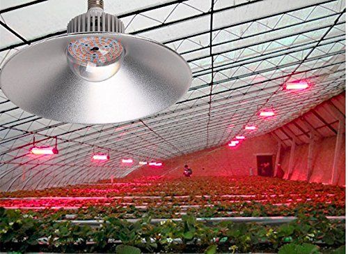 DLPJ 36W Led Grow Light E 27 Led High Bay Light Led Bulb COB Full Spectrum Plant Lamp for Indoor Plant and Greenhouse -- Want to know more, click on the image.