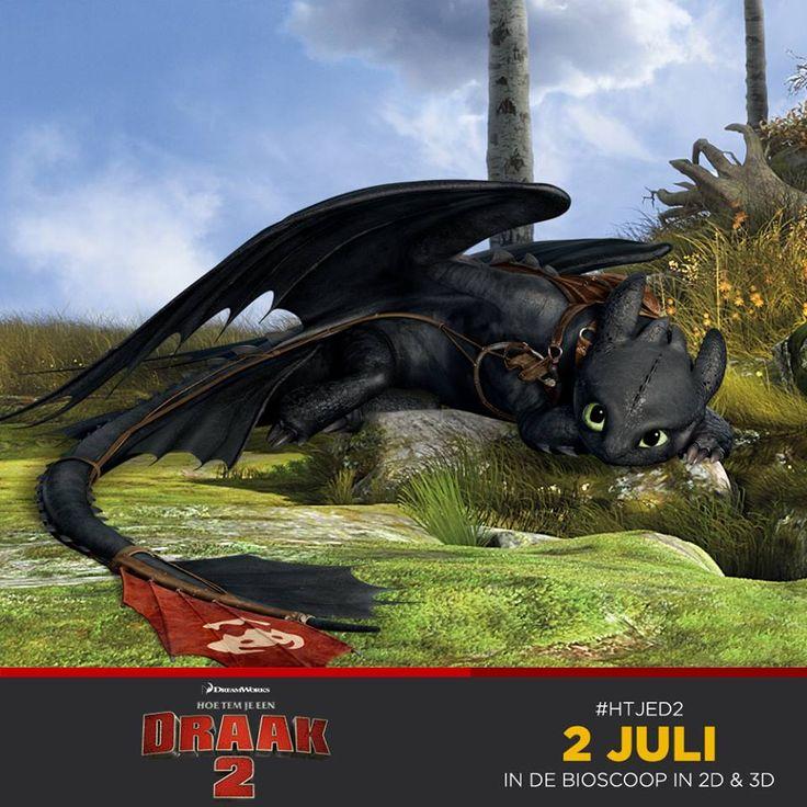 Hoe tem je een draak 2.
