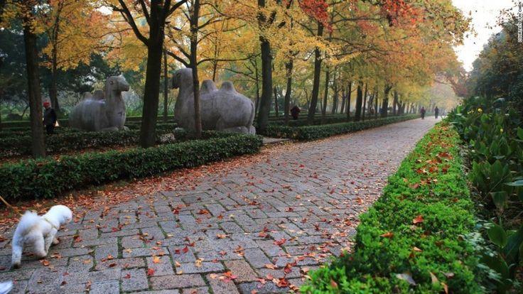 Ускользающая красота древней столицы Китая — Все о туризме и отдыхе