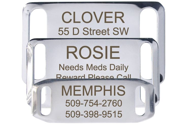Slide-On Stainless Steel Pet ID Tag  $8.45 These are pretty nice to add to collars when you're making them or if you buy buckle collars. It's nice that they don't jingle. I've bought 3 of them and they're a nice quality.