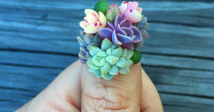 Succulent nails are a thing now. :) *insert joke about having a green thumb here.