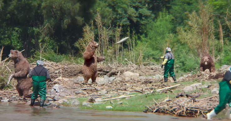 Actual bears and packers play football in the rainforest in Amazon's super literal NFL ad