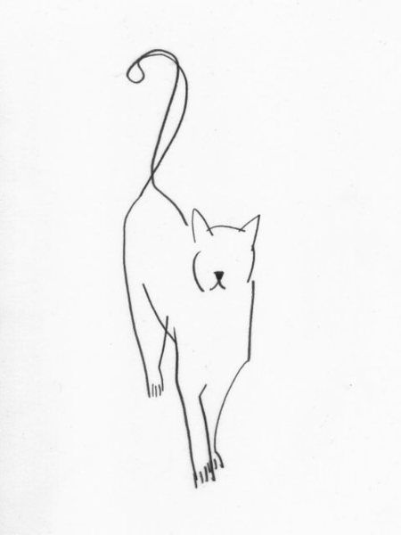 Simple lines for complicated cat