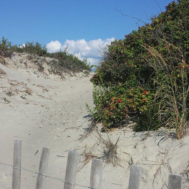Grabbing the last beach walks of the year in the next few weeks.#Newport