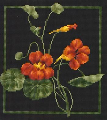 Cross stitch, Jill Oxton
