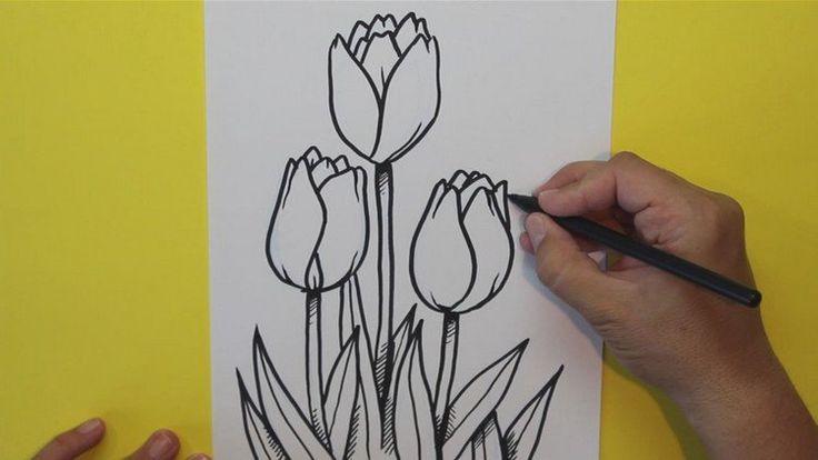 Les 25 meilleures id es de la cat gorie tulipe dessin sur - Tulipe a dessiner ...