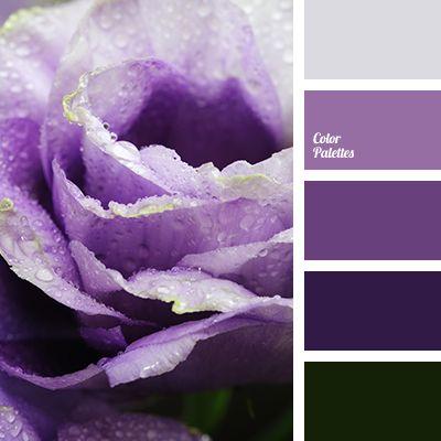Purple Color Schemes a 25 legjobb ötlet a pinteresten a következővel kapcsolatban