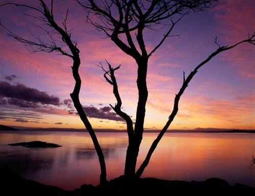 Sleepy Bay, Freycinet National Park. © Paul Sinclair