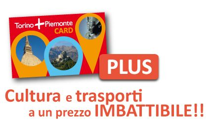 Shop online – Turismo Torino e Provincia