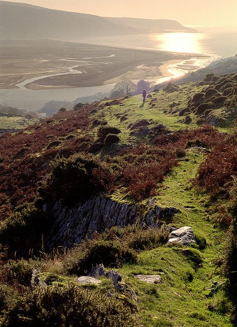 Precipice Walk, Barmouth. Wales, UK by Howard Somerville