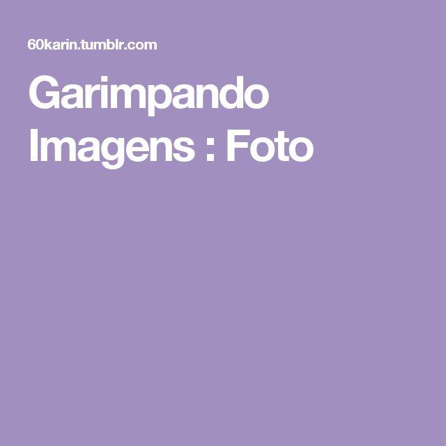 Garimpando Imagens : Foto
