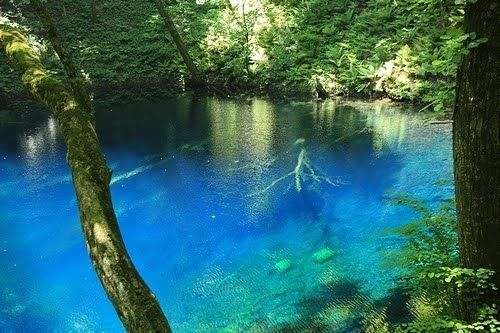 真ブルーの湖!青森県・十二湖「青池」の楽しみ方▶︎ 十二湖とは