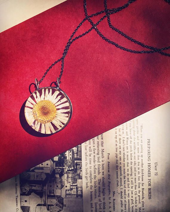 Hand Picked Pressed & Dried Dasiy Summer Necklace Boho