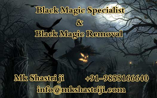 TOUCH this image:-  Black Magic Specialist Pandit M.K Shastri Solve Your Love, Health, Business, Marriage Problem Cause By Black Magic Removal Expert Mk Shastri Contact us for solution of any problems and get Effective results ☎ +91-9855166640  #BlackMagicSpecialist, #BlackMagicSpecialistInIndia, #BlackMagicRemoval, #WorldfamousAstrologer, #Vashikaran Specialist, #LoveProblemSolution, #Vashikaranforhusband