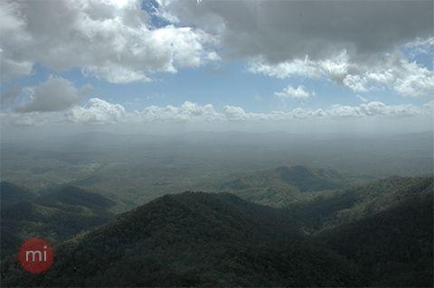 Kroombit Tops National Park - Qld