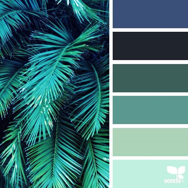 today's inspiration image for { color frond } is by @thebungalow22 ... thank you, Steph, for another awesome #SeedsColor image share!