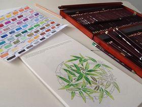 Adriana - Bamboe - Kleurboek voor Volwassenen