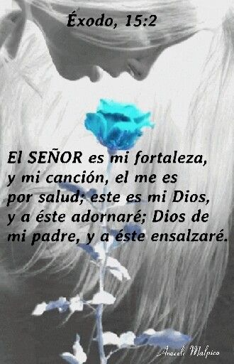Éxodo, 15:2 El SEÑOR es mi fortaleza, y mi canción, el me es por salud; este es…