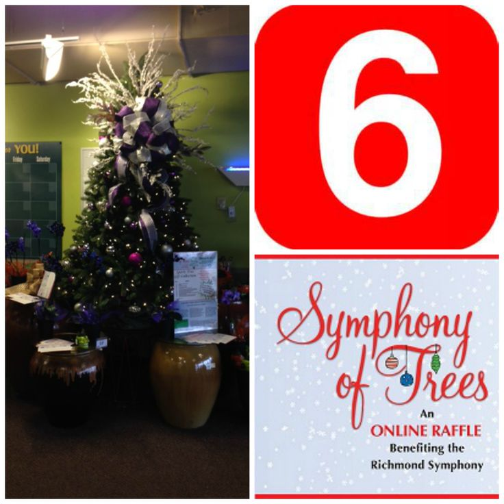 ONLY 6 DAYS LEFT TO ENTER THE 2015 SYMPHONY OF TREES RAFFLE!! DON'T MISS OUT!  Visit www.rsol.org for contest rules, prize lists and to buy tickets.