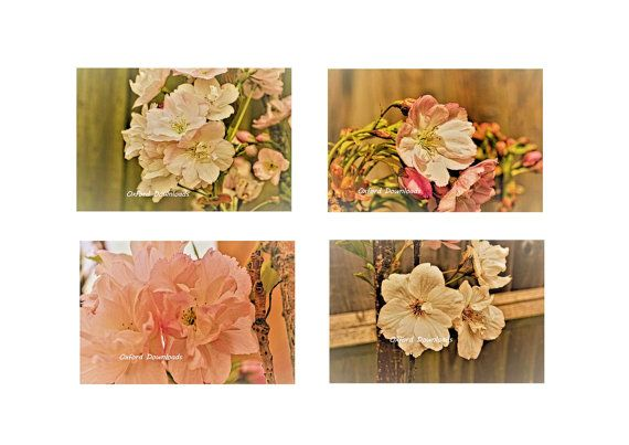 4 x Shabby Chic Cherry Blossom Art Floral Print by OxfordDownloads