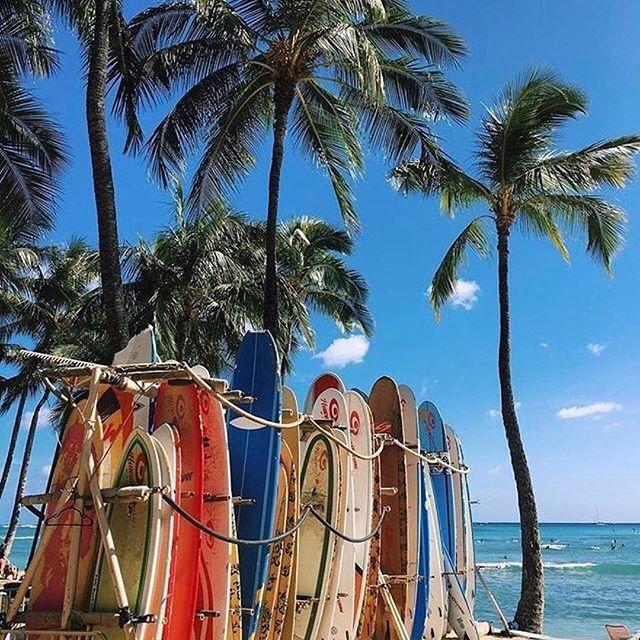 "ki_ele : : 🌴🌴ℳahalo @hawaiimagazine for reposting one of [ᏦI•ᎬᏞᎬ]'S favorite photos ~ that we used as a print for our sister-brand's pouch ""Waikiki Beach"" @alohaequalslove now online at www.ki-ele.com x. . . . #kiele #alohaequalslove #waikiki #fashionchange #honolulu #islandlife #oahu #organic #paradise #love #tropical #beautiful #Godshand #earth #calm #shop #surfboards #happy #beach #island #sun #ocean #earth #waves #palmtrees #aloha #relax #travel #style #hawaii #kielehawaii"