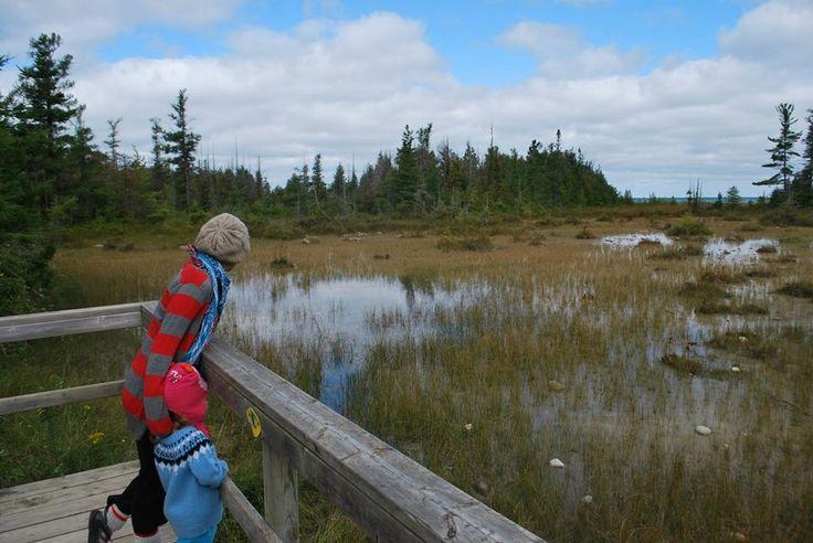 MacGregor Point Provincial Park. On a hike.