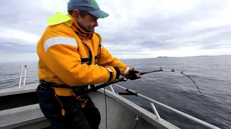 Lengfischen Norwegen Trondheimsleia