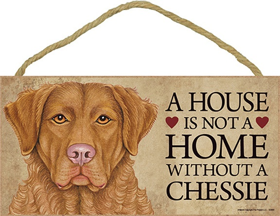 A House is Not a Home Without a Chessie Chesapeake Bay Retriever