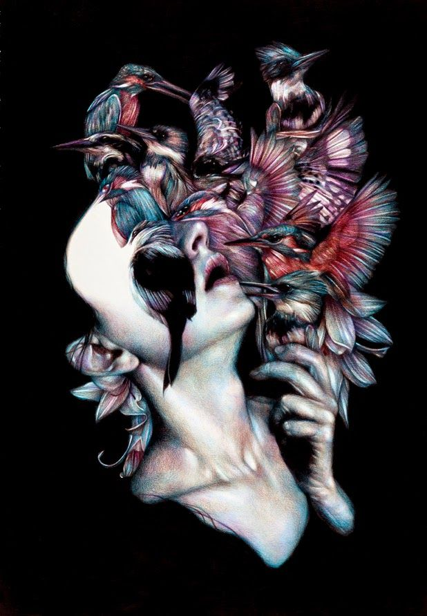 coloured pencil illustrations by Marco Mazzoni