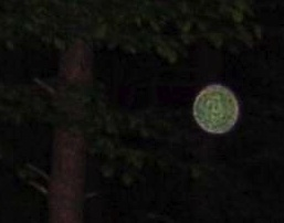 Orbs appear mysteriously in photographs some say they are spirits. Whatever they are they are beautiful.