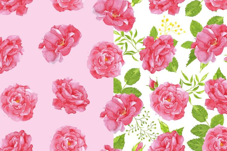 watercolor Pink Roses clipart by angelikpilart on @creativemarket