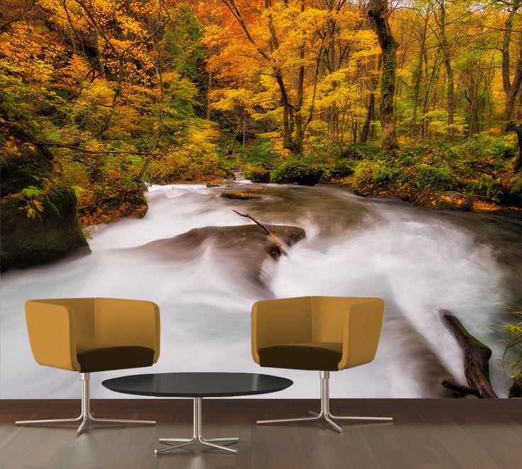 Fotomural Paisaje Otoño. El cambio de color de las hojas, ofrece paisajes especiales que únicamente pueden ser disfrutados en otoño, a tan solo $69.000 el metro cuadrado.