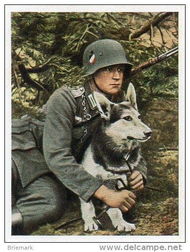 Zigarettenbild Deutsche Wehrmacht BILD 103
