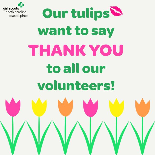 volunteer appreciation by girlscoutsparis see more repin this to give our girl scout volunteers a thank you for their amazing service