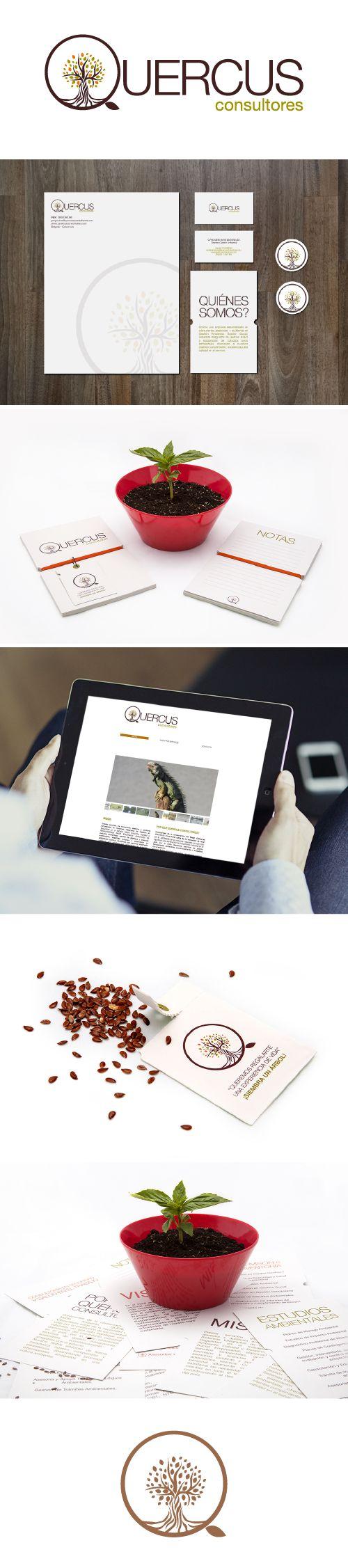 Quercus Consultores  www.estudio201.com DIseño y producción de identidad, logo, brochure, pagina web, piezas impresas