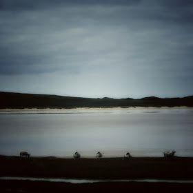 photo hebrides: the sea divides us, Scarista
