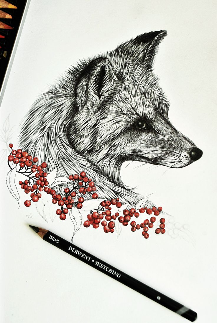 #fox #art #olenka #aleksandrakurczewska #drawing #forest #wild #animal #pencil #foxes If you'd like to see more of my drawing go to my facebook page!