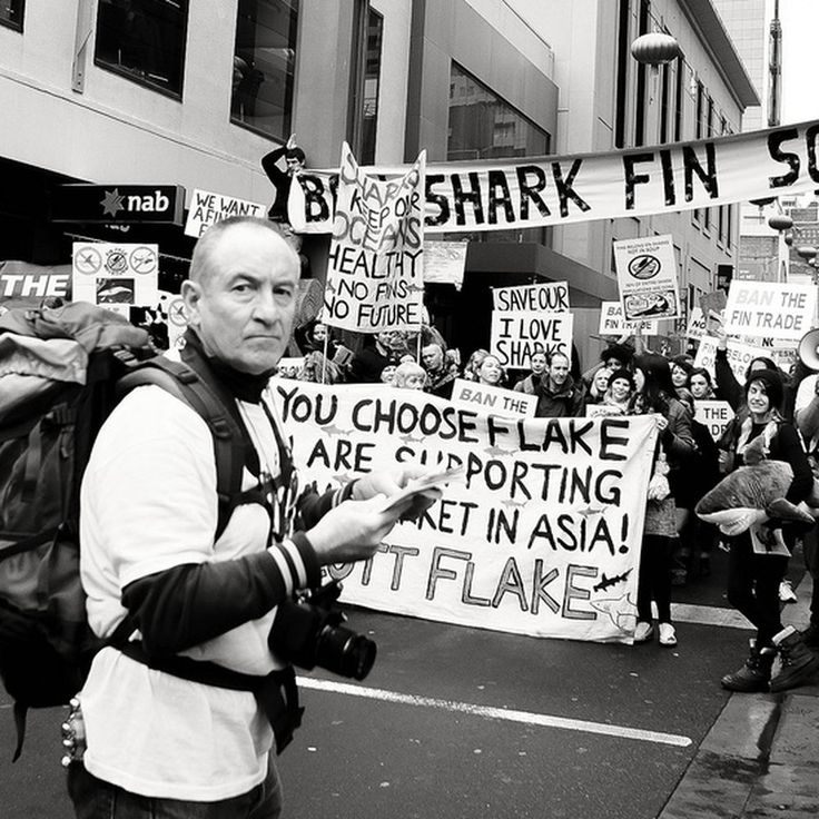 What's Wrong with Banning Shark Fin Soup?  on Food52