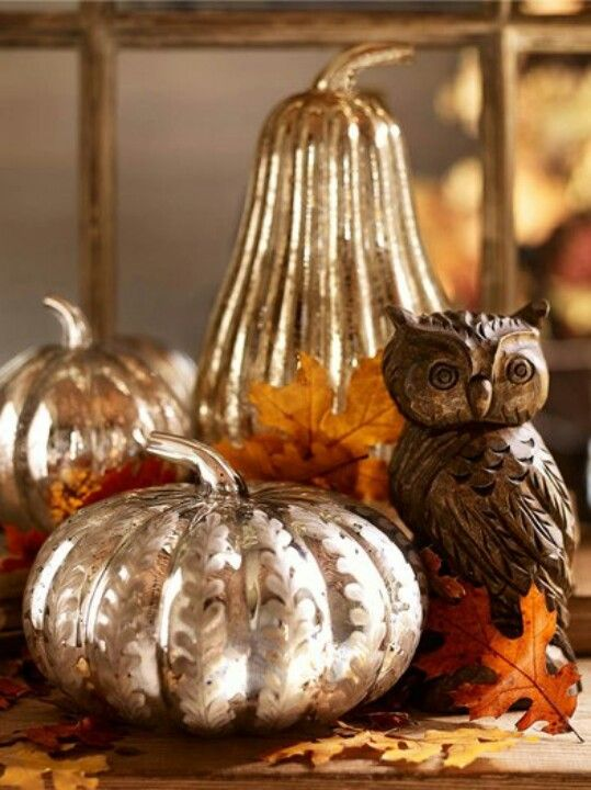 Looking for a cute owl? Hobby Lobby has cute owls around $6 like this one shown. I found a mercury glass one at 40% off ($7). No joke.