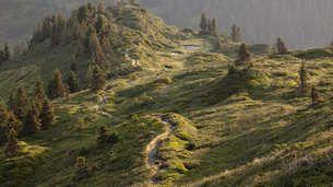 Alpenüberquerung - Etappe 4: Von Maurach am Achensee nach Hochfügen
