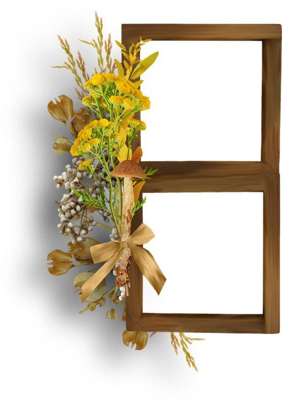 trouv sur frames 3 floral. Black Bedroom Furniture Sets. Home Design Ideas