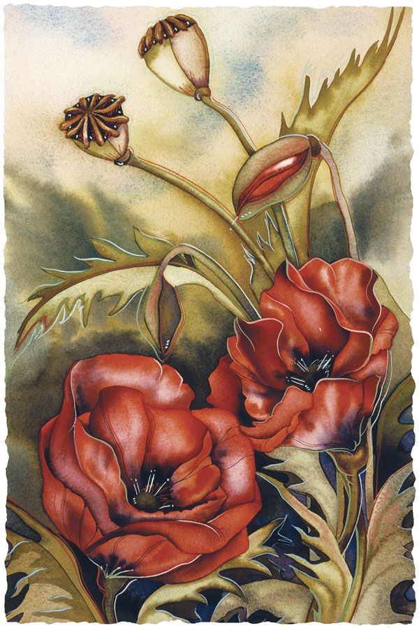 Bergsma Gallery Press::Paintings::Floral::Secrets Of The Orient - Prints