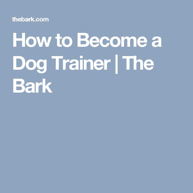 How to Become a Dog Trainer | The Bark Read more in: http://lovablepawsandclaws.com/
