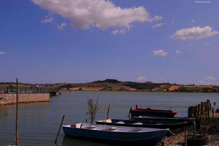 Nikonclub.it - Lago di Chiusi