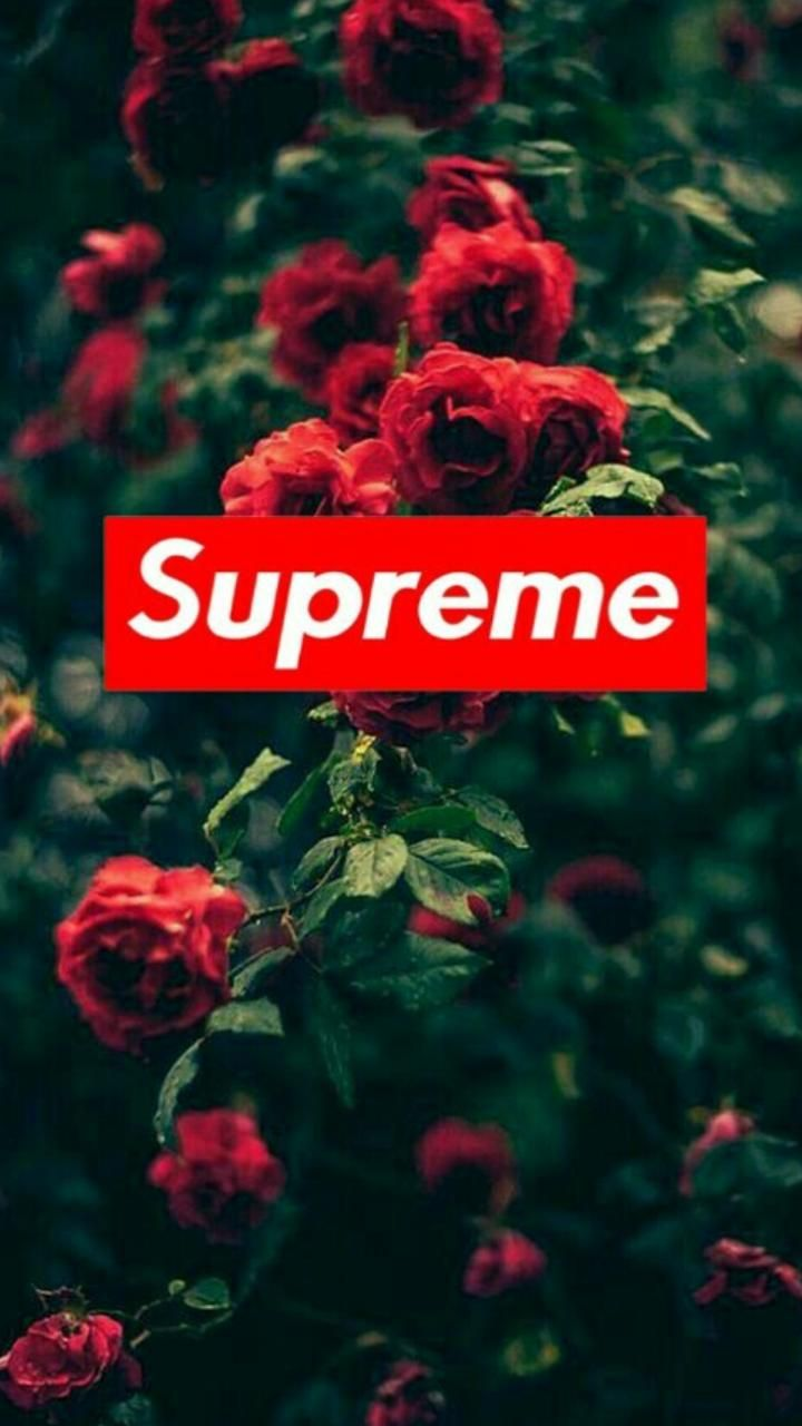 Download Supreme Roses Wallpaper By 0dd Future