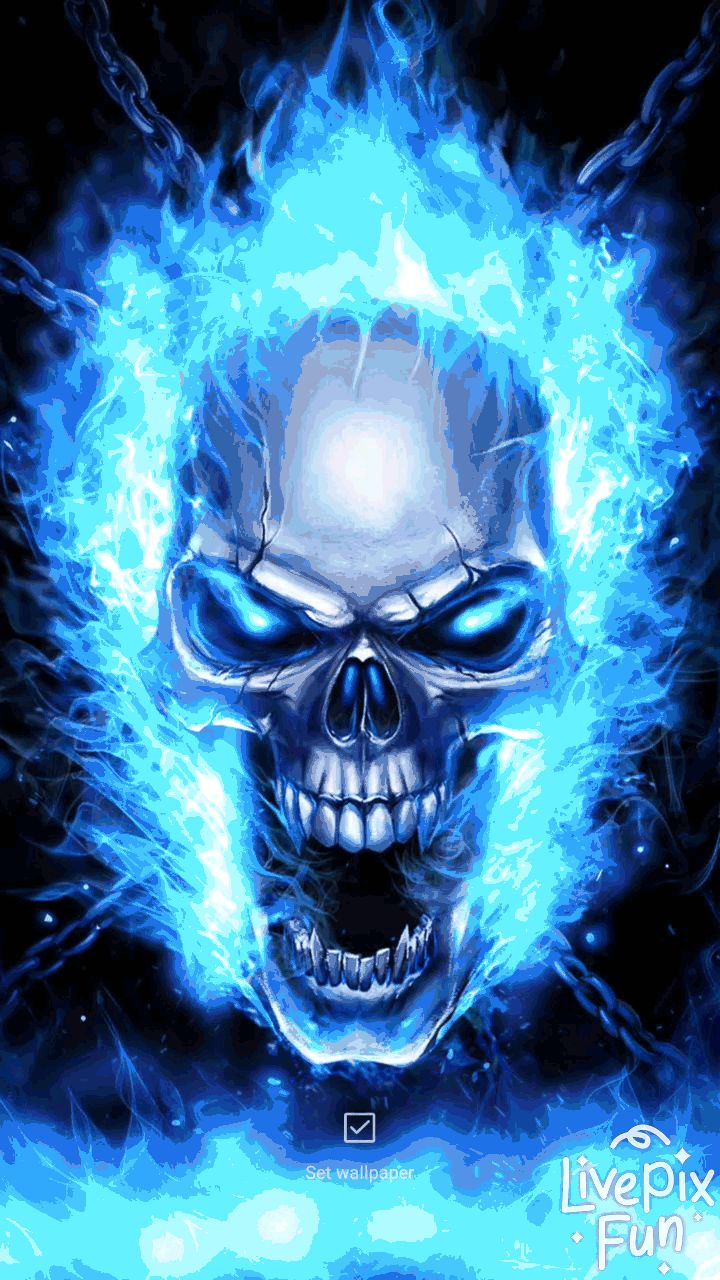 skull live wallpaper💀 blue flame skull live wallpaper