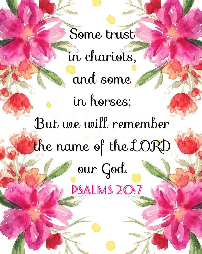 Psalm 20:7 KJV